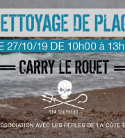 Nettoyage de plage - Carry Le Rouet