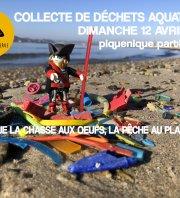 collecte de déchets marins
