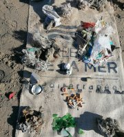 Sortie terrain Remèd/BioLit sur la plage des Aresquiers à Frontignan !