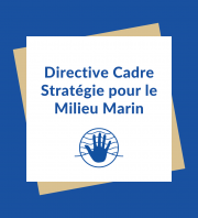 DCSMM - Plage Napoléon - Port-Saint-Louis-du-Rhône