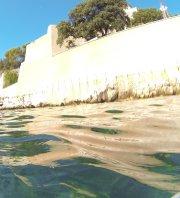 Nettoyage sous-marin devant la Citadelle