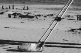 Collecte déchets sauvages - plage de la mitre