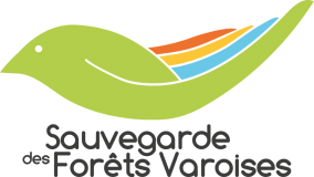 Association Sauvegarde Des Forêts Varoises